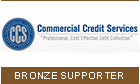 Commercial Credit Services