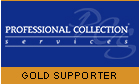 Professional Collection Services